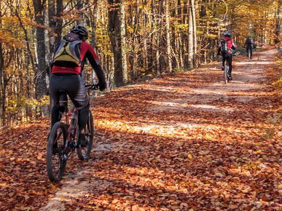 mountain bike shop in Pocono, PA